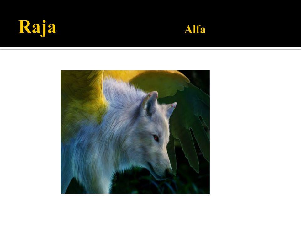 Raja Alfa