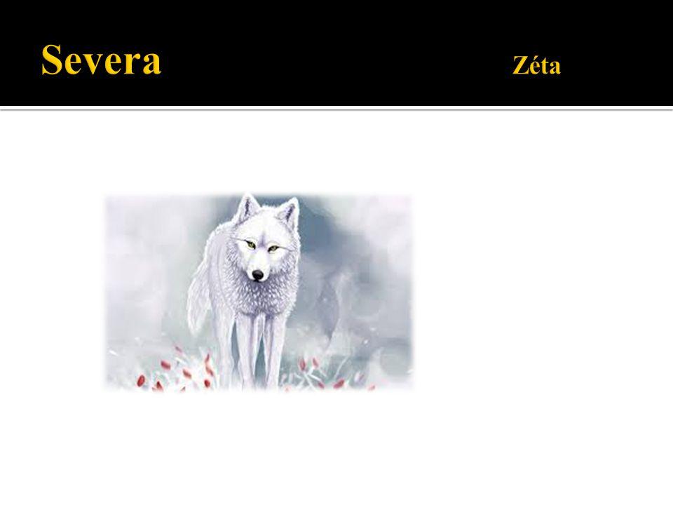 Severa Zéta