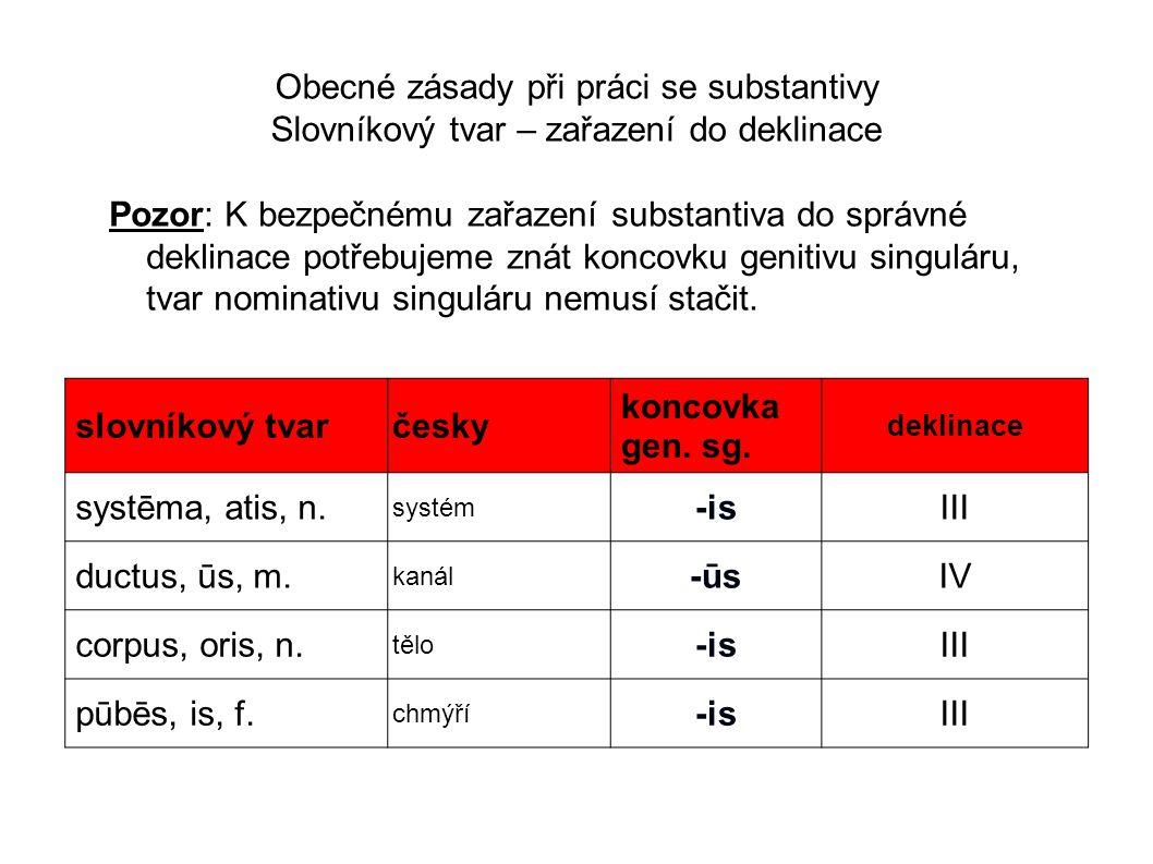 Obecné zásady při práci se substantivy Slovníkový tvar – zařazení do deklinace