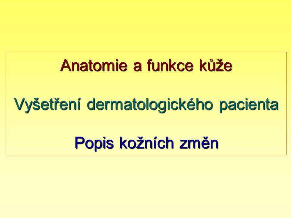 Anatomie a funkce kůže Vyšetření dermatologického pacienta Popis kožních změn