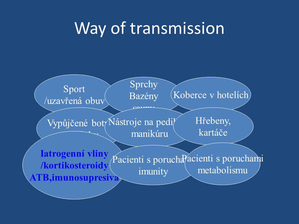 Way of transmission Sprchy Sport Bazény Koberce v hotelích