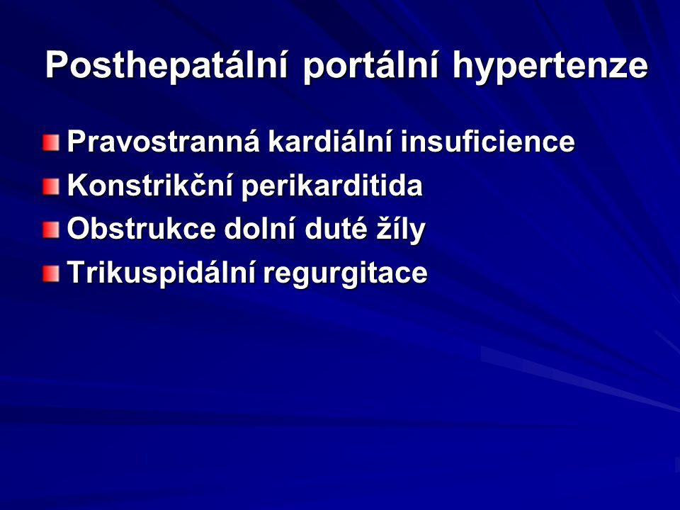 Posthepatální portální hypertenze