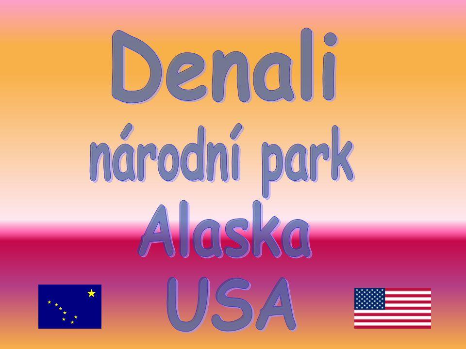 Denali národní park Alaska USA