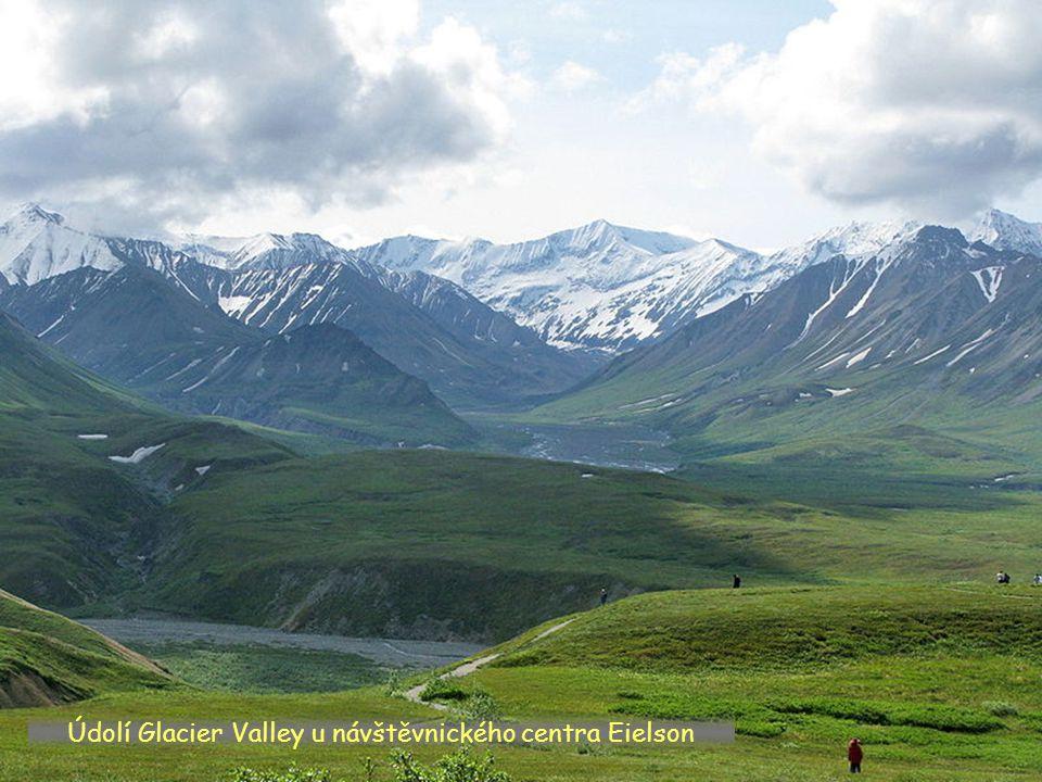 Údolí Glacier Valley u návštěvnického centra Eielson