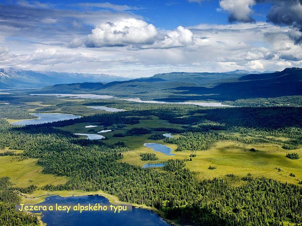 Jezera a lesy alpského typu