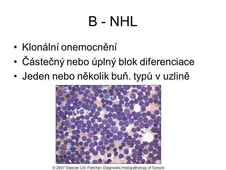 B - NHL Klonální onemocnění Částečný nebo úplný blok diferenciace