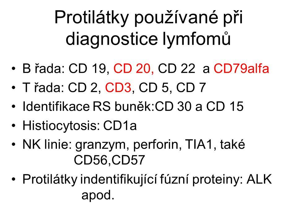 Protilátky používané při diagnostice lymfomů