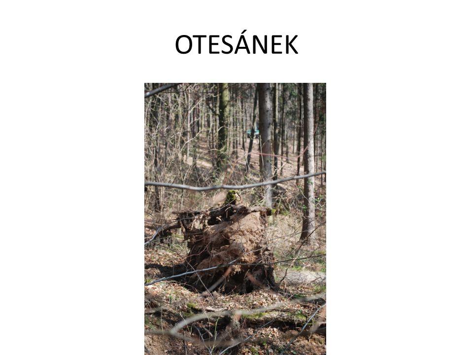 OTESÁNEK