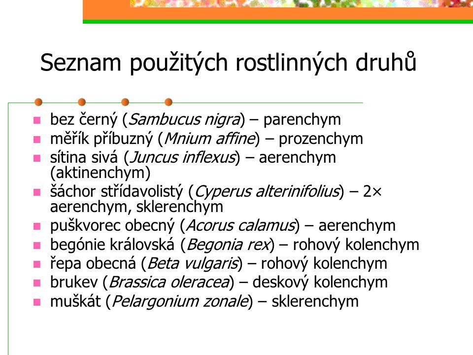 Seznam použitých rostlinných druhů