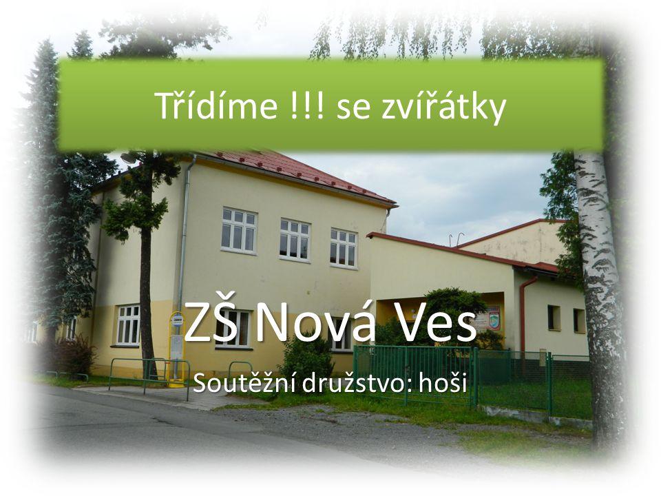 ZŠ Nová Ves Soutěžní družstvo: hoši
