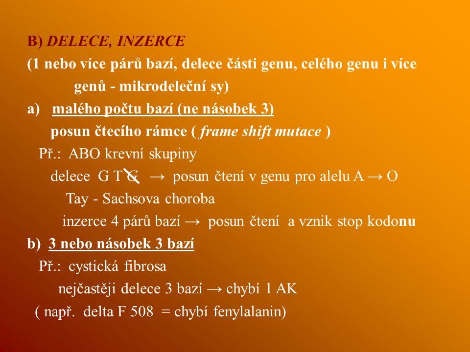 B) DELECE, INZERCE (1 nebo více párů bazí, delece části genu, celého genu i více. genů - mikrodeleční sy)
