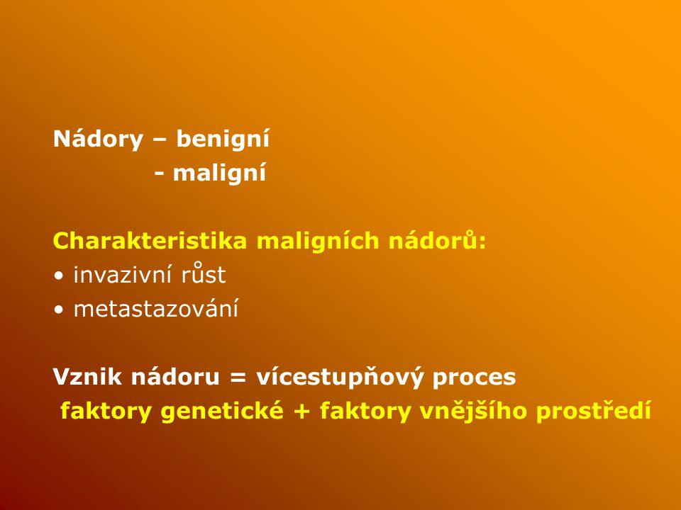 Nádory – benigní - maligní. Charakteristika maligních nádorů: invazivní růst. metastazování. Vznik nádoru = vícestupňový proces.