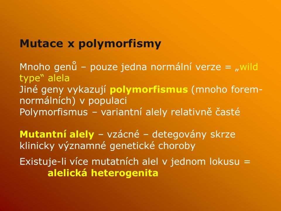 """Mutace x polymorfismy Mnoho genů – pouze jedna normální verze = """"wild type alela."""