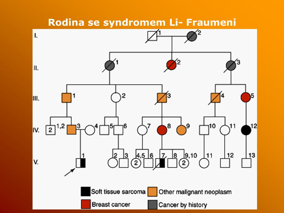 Rodina se syndromem Li- Fraumeni
