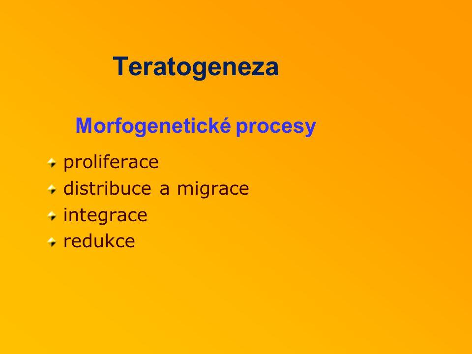 Teratogeneza Morfogenetické procesy