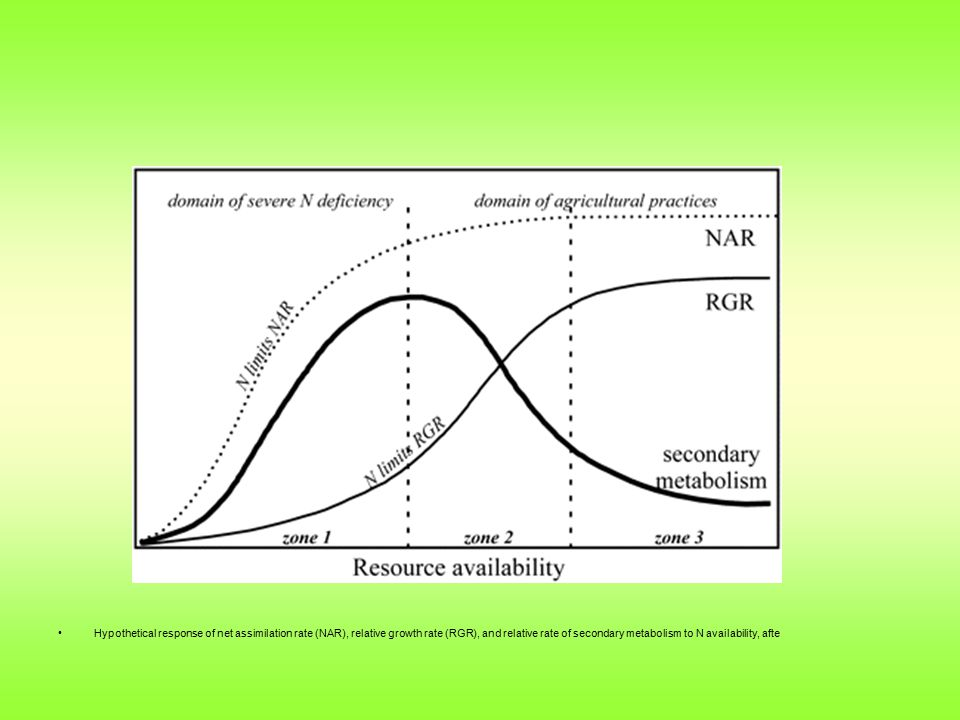 Hypothetical response of net assimilation rate (NAR), relative growth rate (RGR), and relative rate of secondary metabolism to N availability, afte