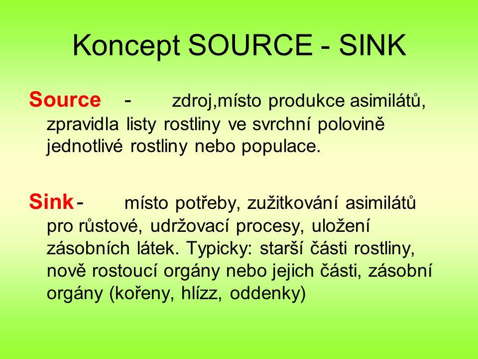 Koncept SOURCE - SINK Source - zdroj,místo produkce asimilátů, zpravidla listy rostliny ve svrchní polovině jednotlivé rostliny nebo populace.