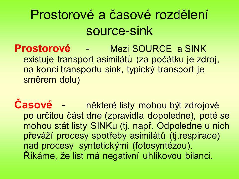 Prostorové a časové rozdělení source-sink