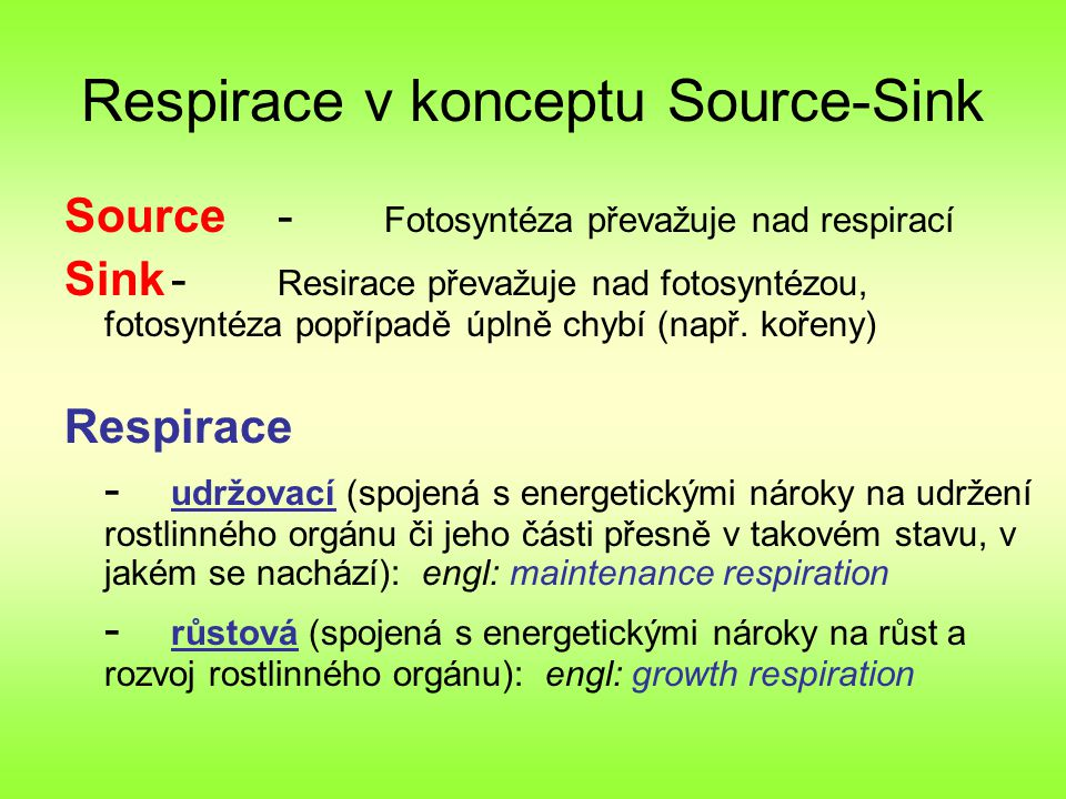 Respirace v konceptu Source-Sink