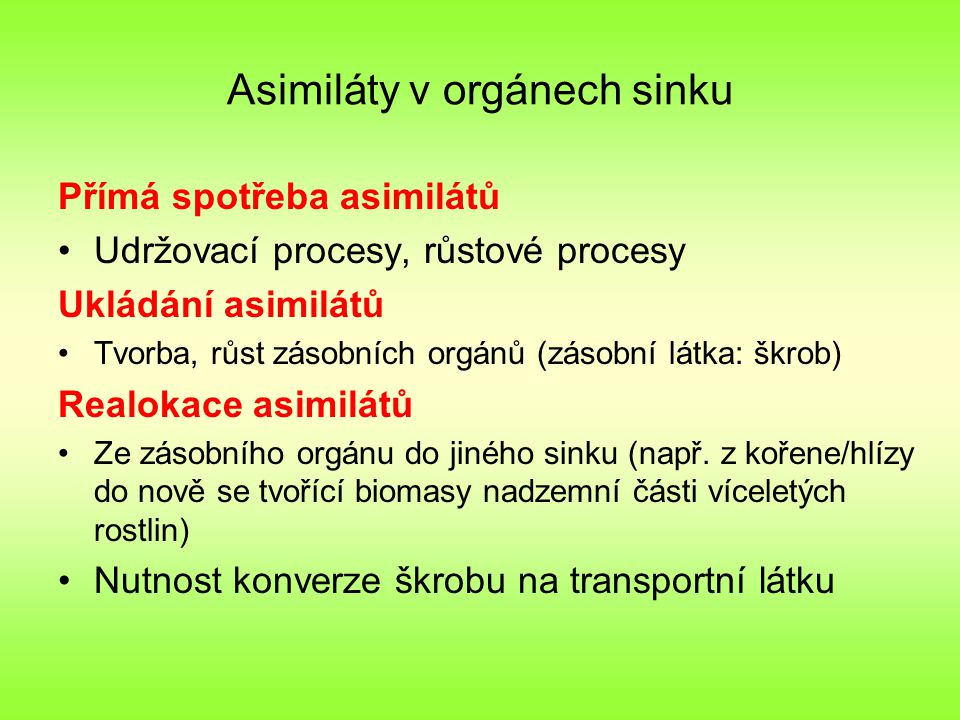 Asimiláty v orgánech sinku