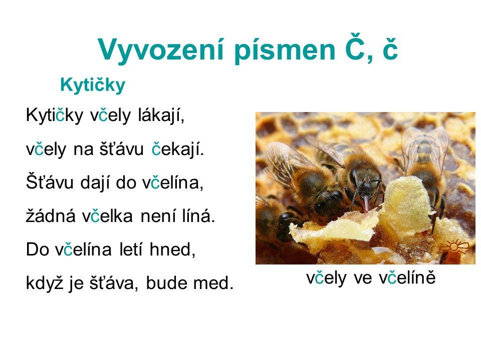 Vyvození písmen Č, č Kytičky Kytičky včely lákají,