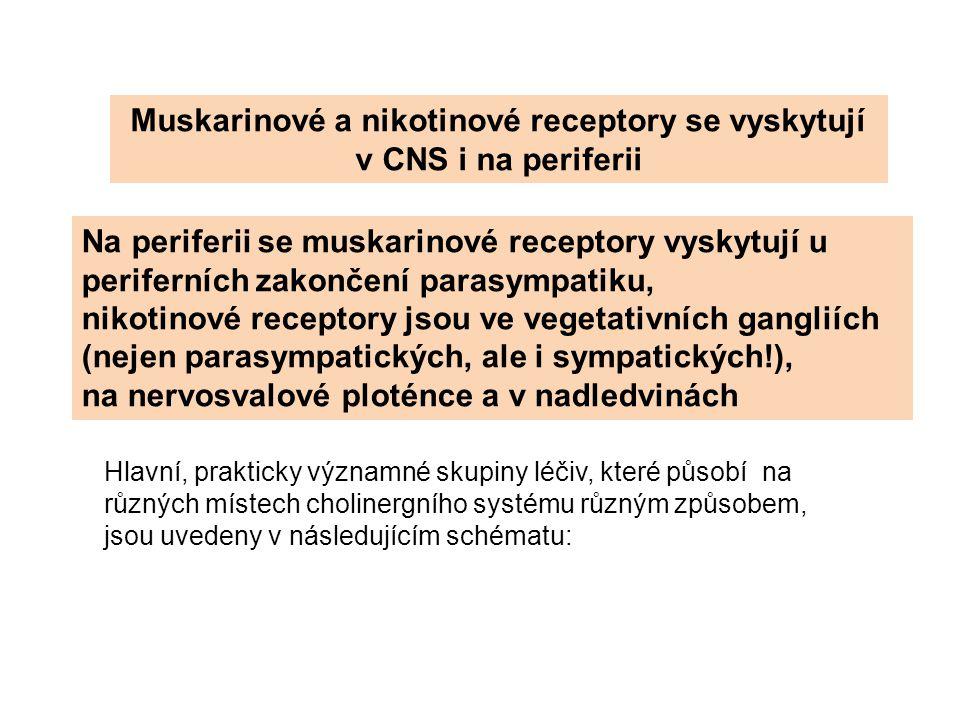 Muskarinové a nikotinové receptory se vyskytují v CNS i na periferii
