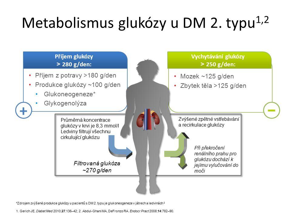 Metabolismus glukózy u DM 2. typu1,2
