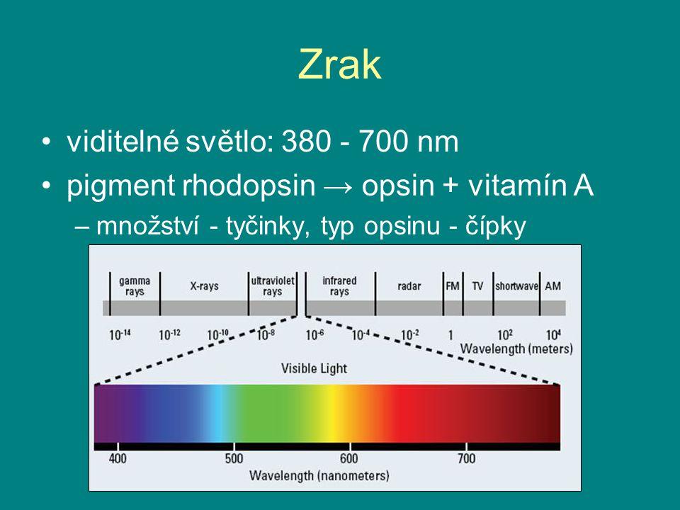 Zrak viditelné světlo: 380 - 700 nm