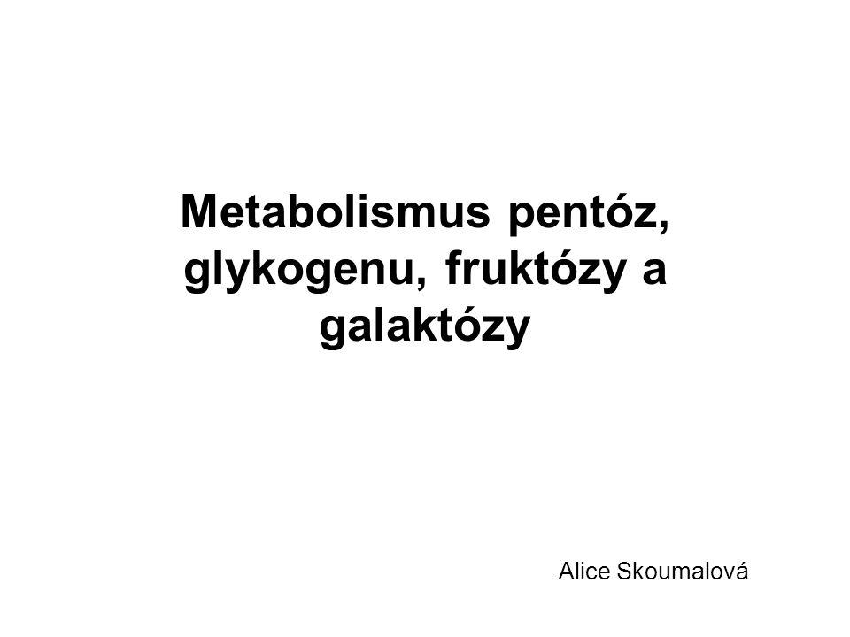 Metabolismus pentóz, glykogenu, fruktózy a galaktózy