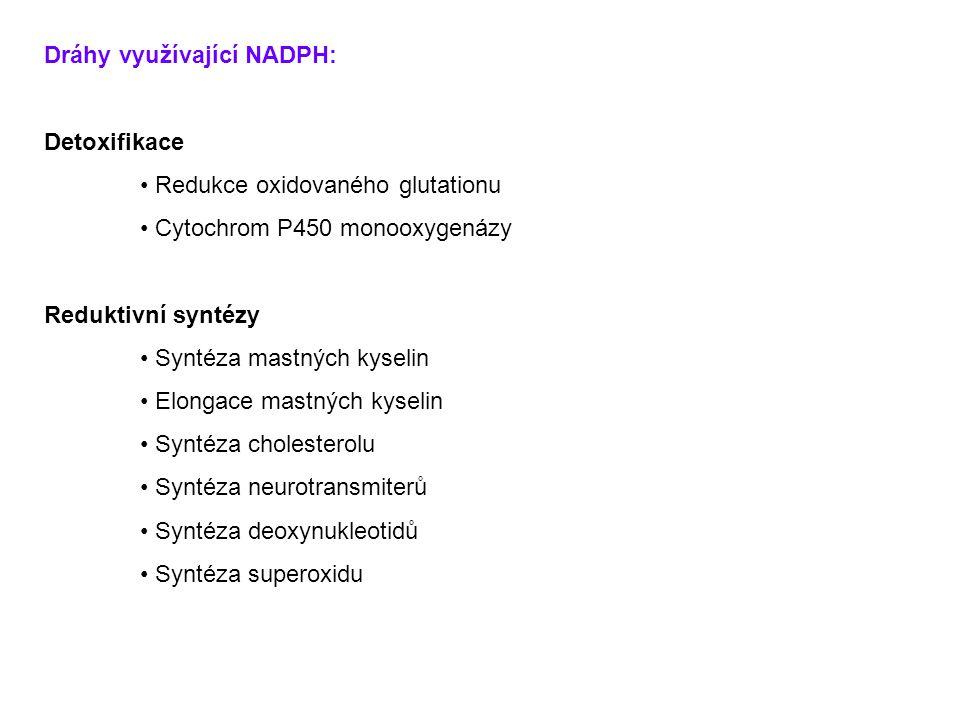 Dráhy využívající NADPH: