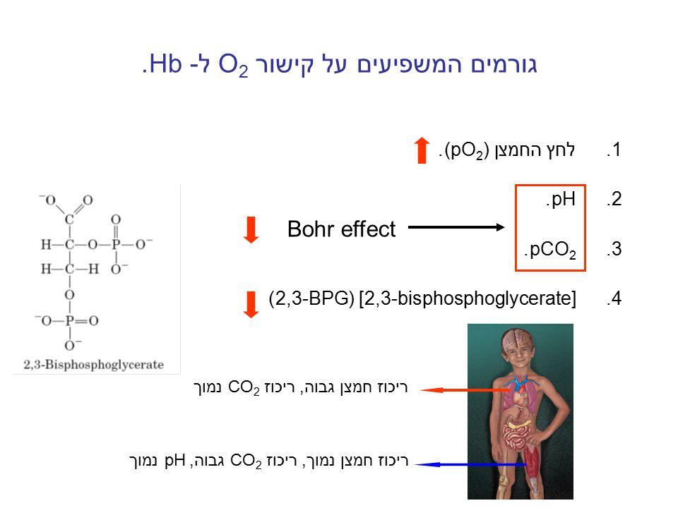 גורמים המשפיעים על קישור O2 ל- Hb.