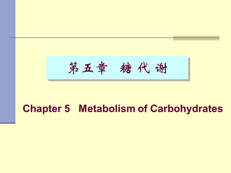 Chapter 5 Metabolism of Carbohydrates