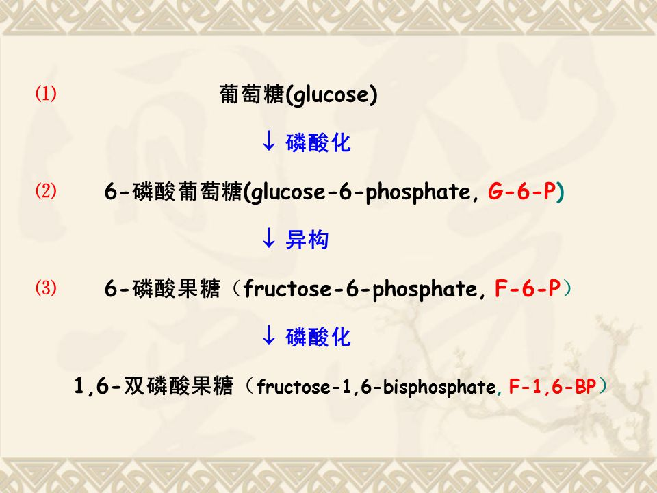 ⑴ 葡萄糖(glucose)  磷酸化. ⑵ 6-磷酸葡萄糖(glucose-6-phosphate, G-6-P)  异构. ⑶ 6-磷酸果糖(fructose-6-phosphate, F-6-P)