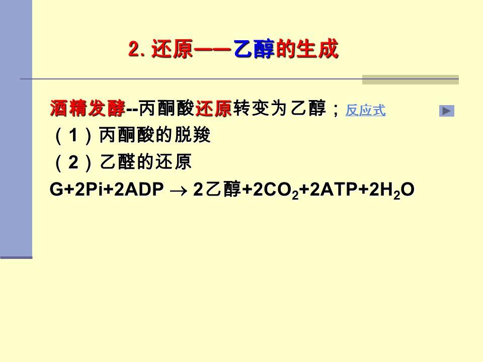 酒精发酵--丙酮酸还原转变为乙醇;反应式 (1)丙酮酸的脱羧 (2)乙醛的还原