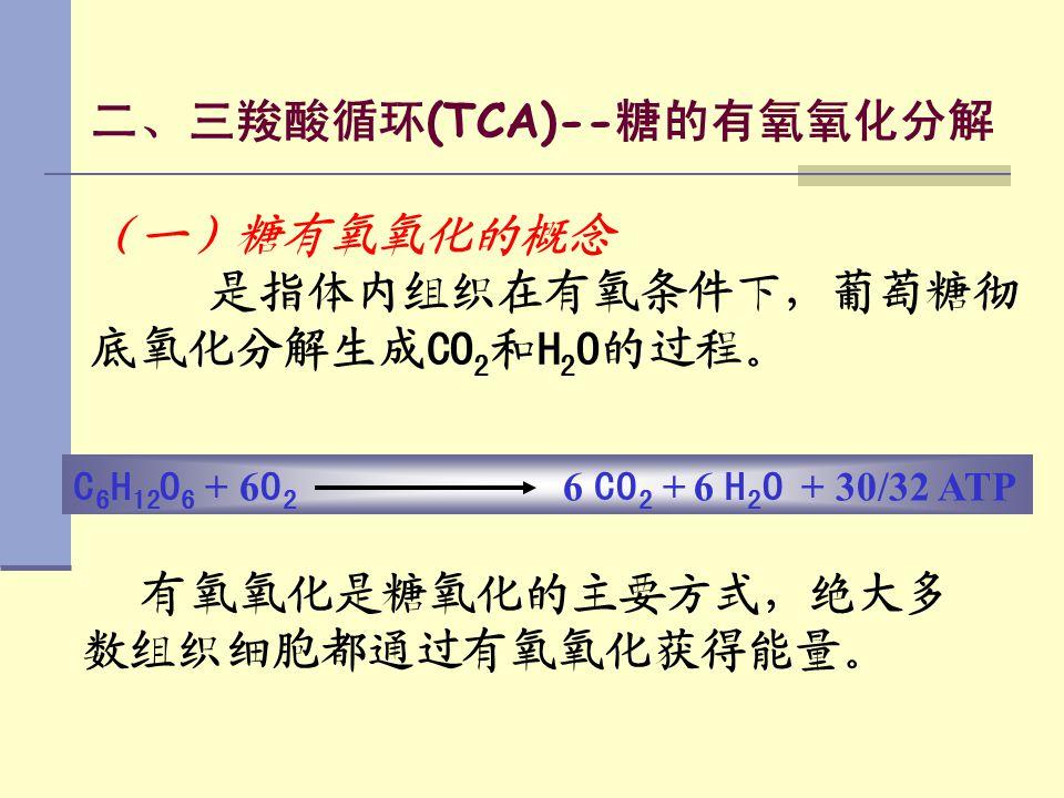 二、三羧酸循环(TCA)--糖的有氧氧化分解