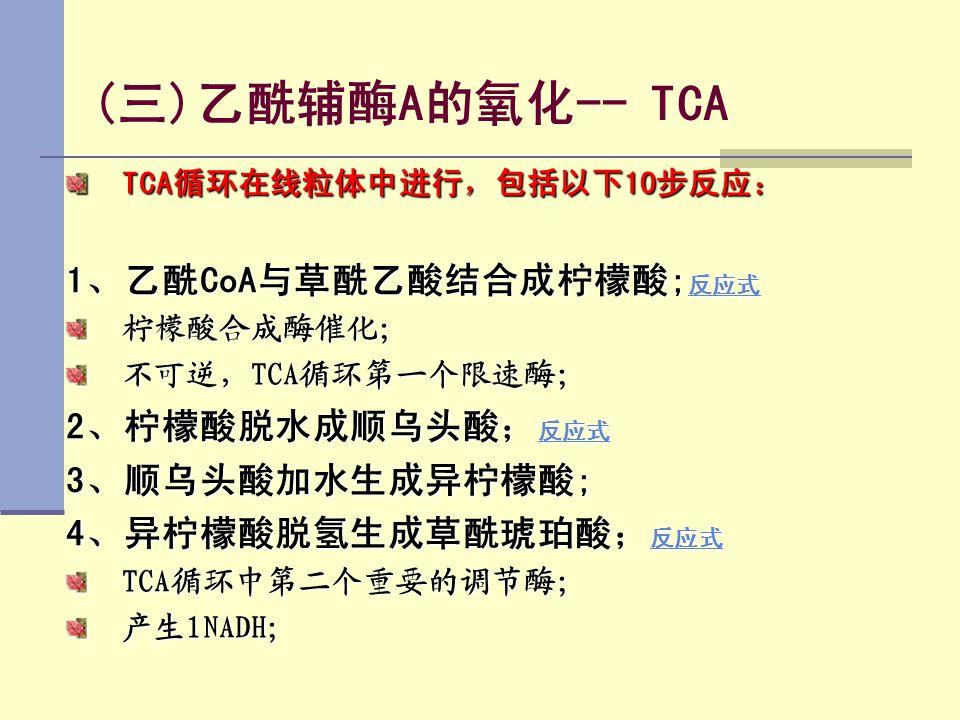 (三)乙酰辅酶A的氧化-- TCA 1、乙酰CoA与草酰乙酸结合成柠檬酸;反应式 2、柠檬酸脱水成顺乌头酸;反应式