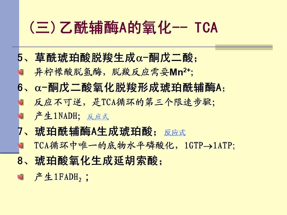 (三)乙酰辅酶A的氧化-- TCA 5、草酰琥珀酸脱羧生成-酮戊二酸; 6、-酮戊二酸氧化脱羧形成琥珀酰辅酶A;