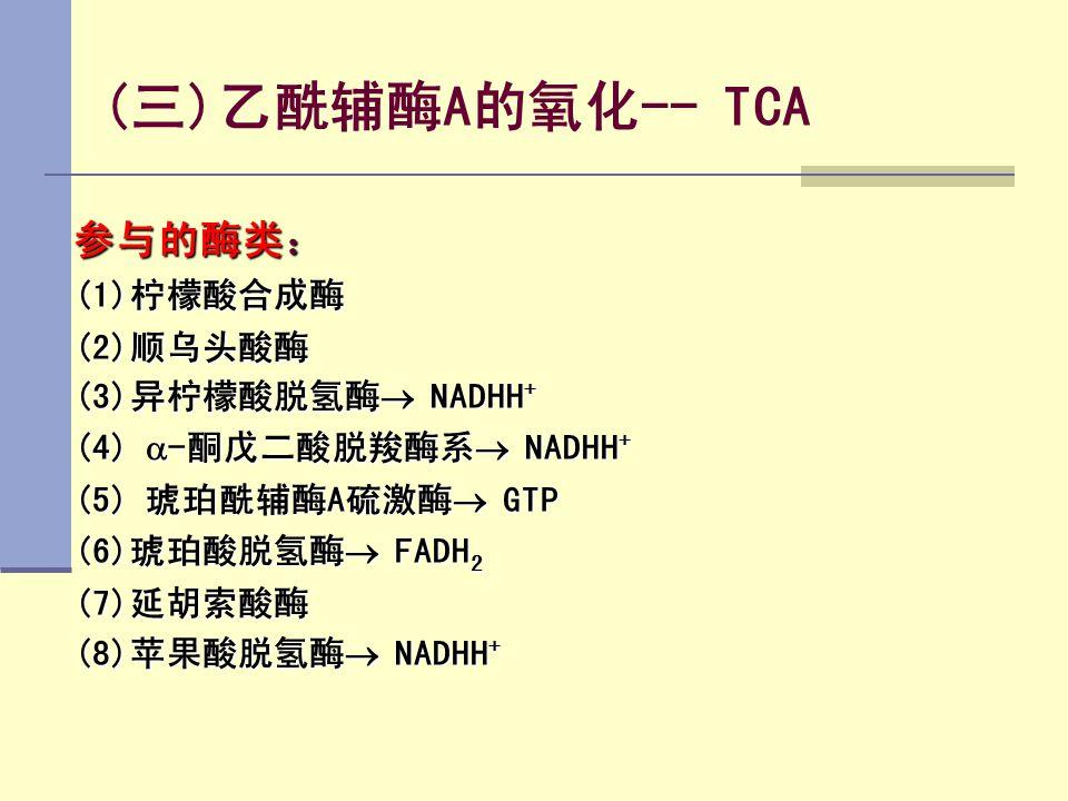 (三)乙酰辅酶A的氧化-- TCA 参与的酶类: (1)柠檬酸合成酶 (2)顺乌头酸酶 (3)异柠檬酸脱氢酶 NADHH+
