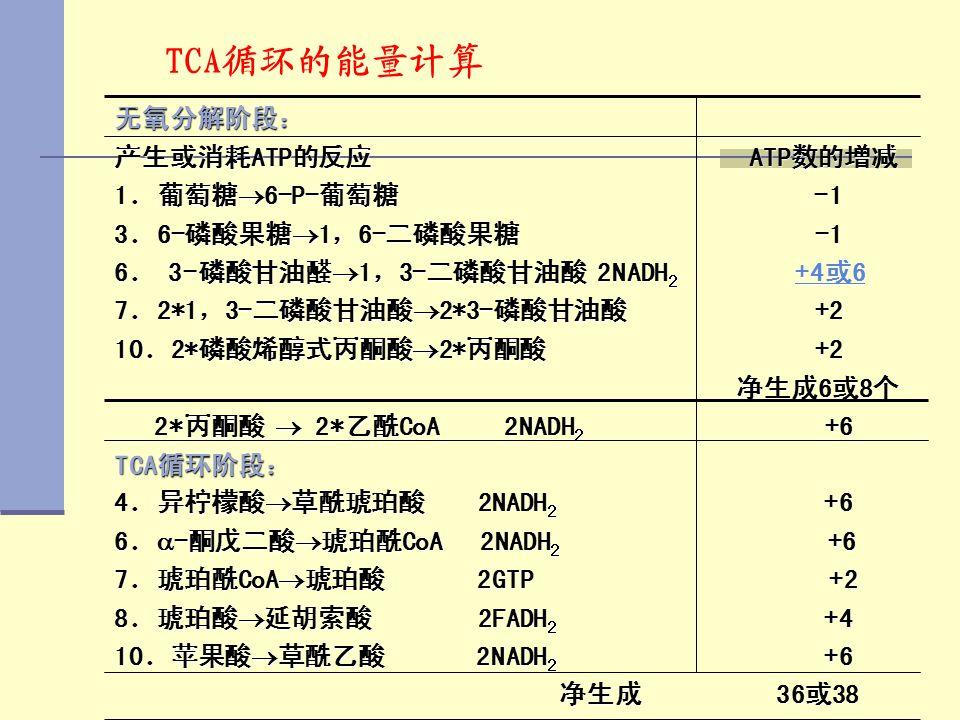 TCA循环的能量计算 无氧分解阶段: 产生或消耗ATP的反应 ATP数的增减 1.葡萄糖6-P-葡萄糖 -1