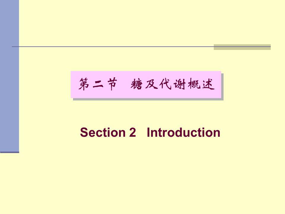 第二节 糖及代谢概述 Section 2 Introduction