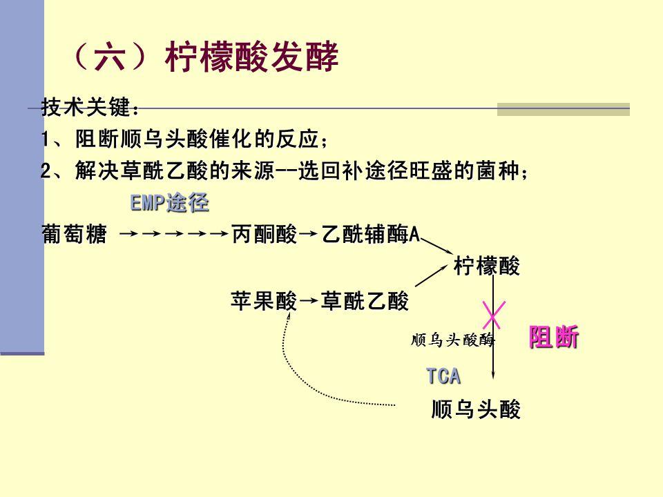 (六)柠檬酸发酵 TCA 技术关键: 1、阻断顺乌头酸催化的反应; 2、解决草酰乙酸的来源--选回补途径旺盛的菌种; EMP途径