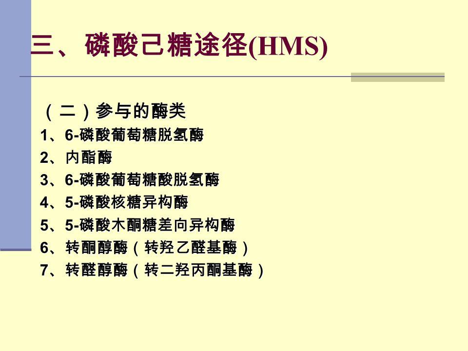 三、磷酸己糖途径(HMS) (二)参与的酶类 1、6-磷酸葡萄糖脱氢酶 2、内酯酶 3、6-磷酸葡萄糖酸脱氢酶 4、5-磷酸核糖异构酶