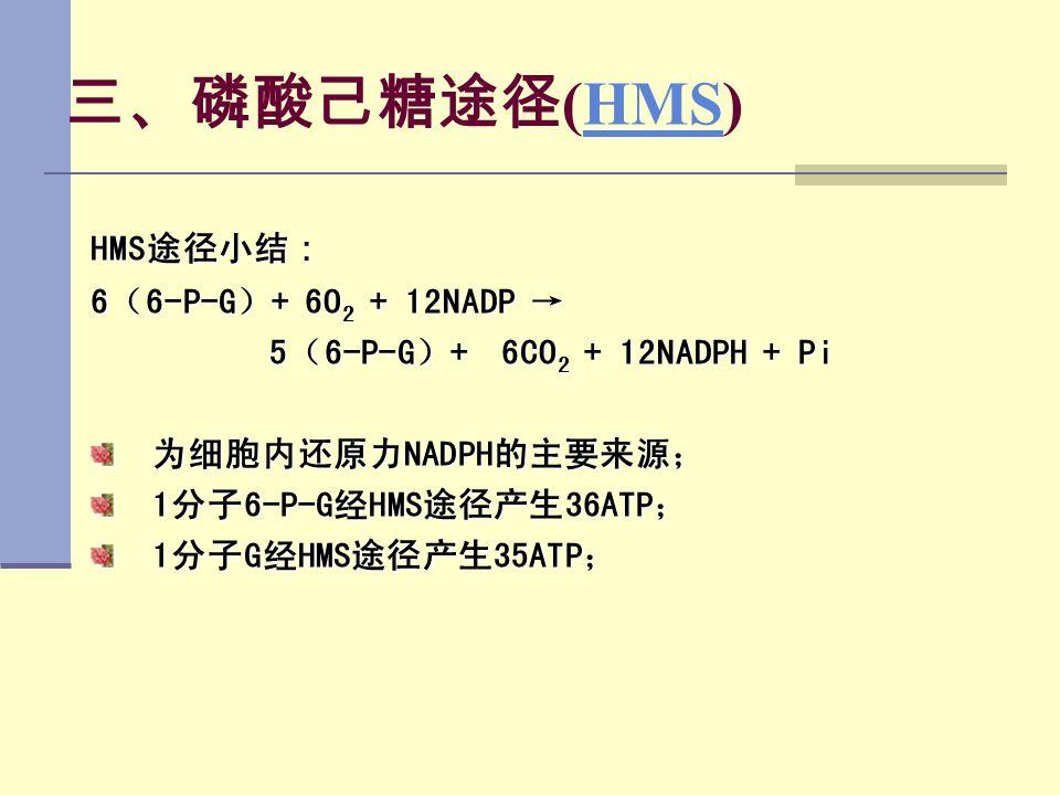 三、磷酸己糖途径(HMS) HMS途径小结: 6(6-P-G)+ 6O2 + 12NADP →