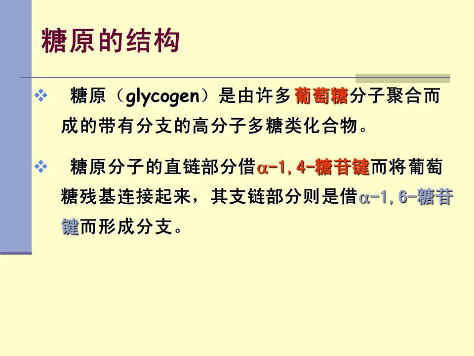 糖原的结构 糖原(glycogen)是由许多葡萄糖分子聚合而成的带有分支的高分子多糖类化合物。