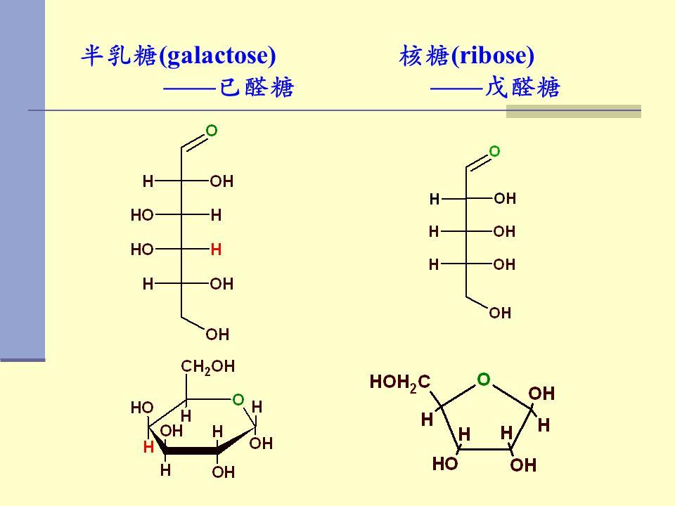 半乳糖(galactose) ——已醛糖 核糖(ribose) ——戊醛糖