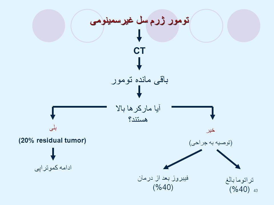 تومور ژرم سل غیرسمینومی