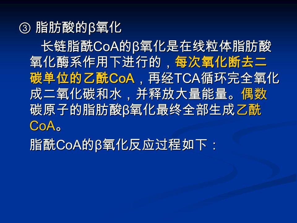③ 脂肪酸的β氧化 长链脂酰CoA的β氧化是在线粒体脂肪酸氧化酶系作用下进行的,每次氧化断去二碳单位的乙酰CoA,再经TCA循环完全氧化成二氧化碳和水,并释放大量能量。偶数碳原子的脂肪酸β氧化最终全部生成乙酰CoA。
