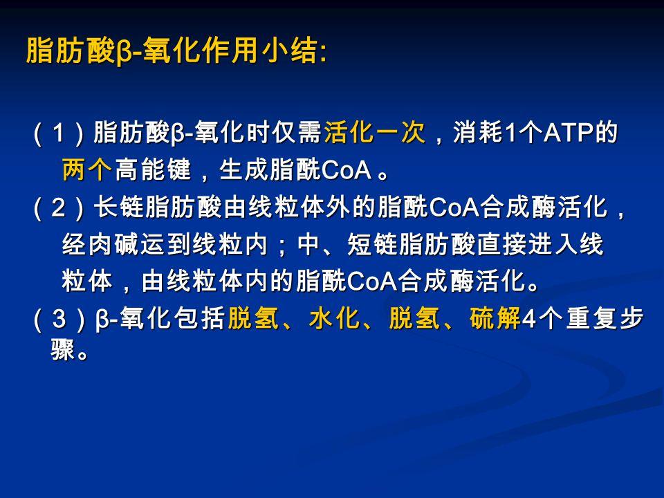 脂肪酸β-氧化作用小结: (1)脂肪酸β-氧化时仅需活化一次,消耗1个ATP的 两个高能键,生成脂酰CoA 。