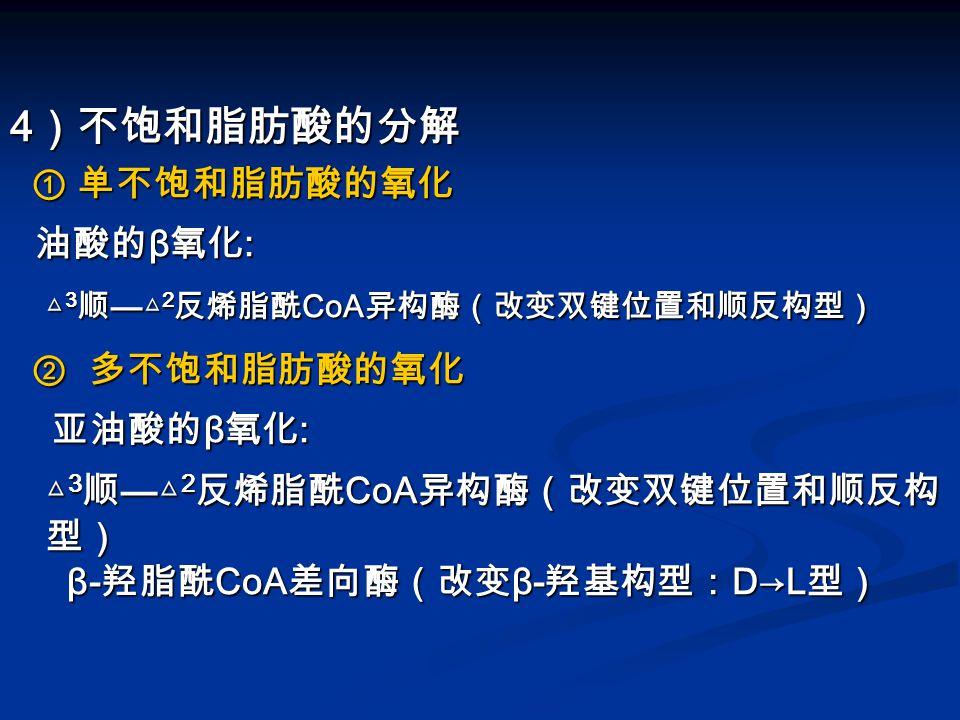 △3顺—△2反烯脂酰CoA异构酶(改变双键位置和顺反构型)