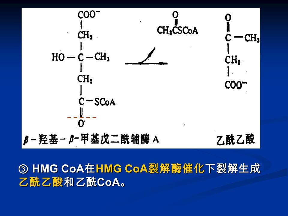 图 酮体的生成-3 ③ HMG CoA在HMG CoA裂解酶催化下裂解生成乙酰乙酸和乙酰CoA。